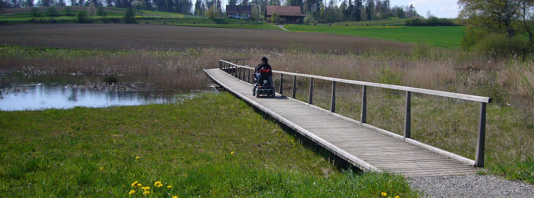 Holzsteg über Sumpfgebiet mit Wanderin im Rollstuhl